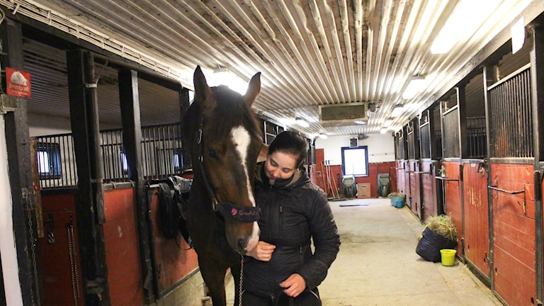 Sigrid Westerholm med häst. Foto: Johanna Svensson/Sveriges Radio