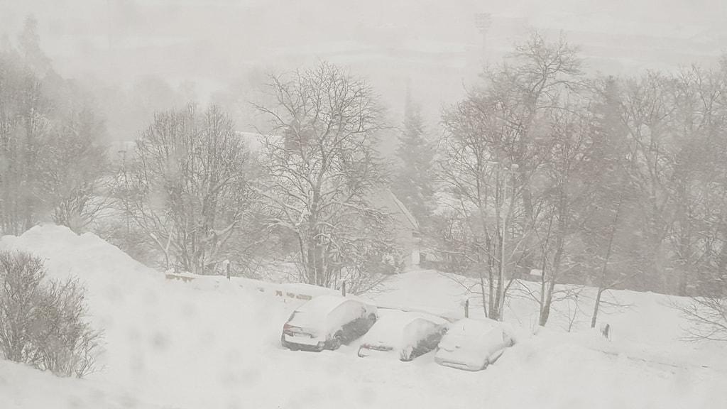 Tre översnöade bilar i en snöyra i Sundsvall. I bakgrunden anas konturerna av stadens fotbollsarena.