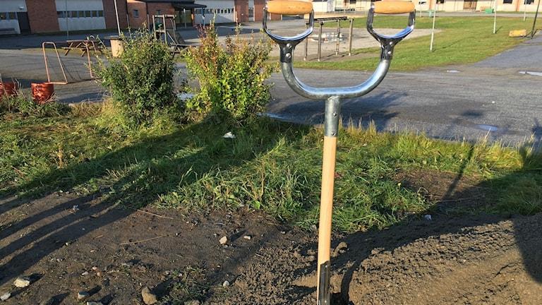 Spade som används vid symboliskt första spadtaget vid skolan i Bredbyn.