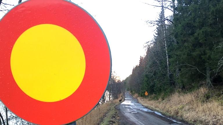 En stor stoppskylt i förgrunden vid väg 839 intill Storsjön som är avstängd. Foto: Anton Kårén/Sveriges Radio