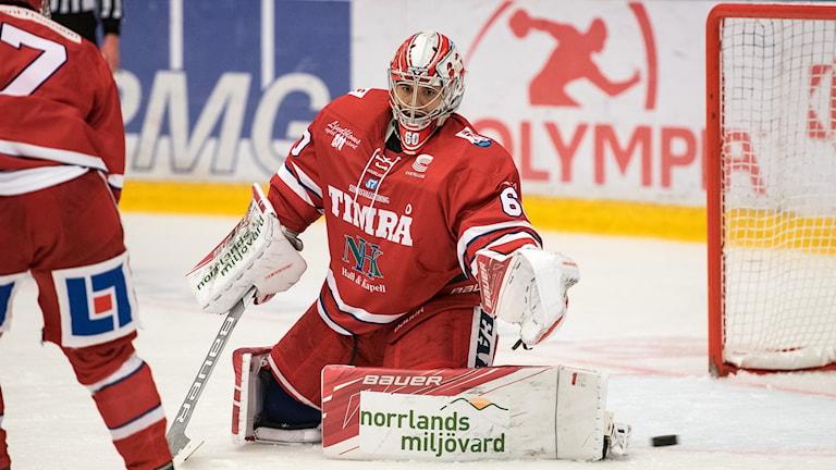 Timrå IKs målvakt Adam Ohre i en match i Hockeyallsvenskan.