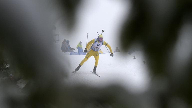 Sebastian Samuelsson mitt i guldloppet vid skidskyttestafetten i Oberhof.
