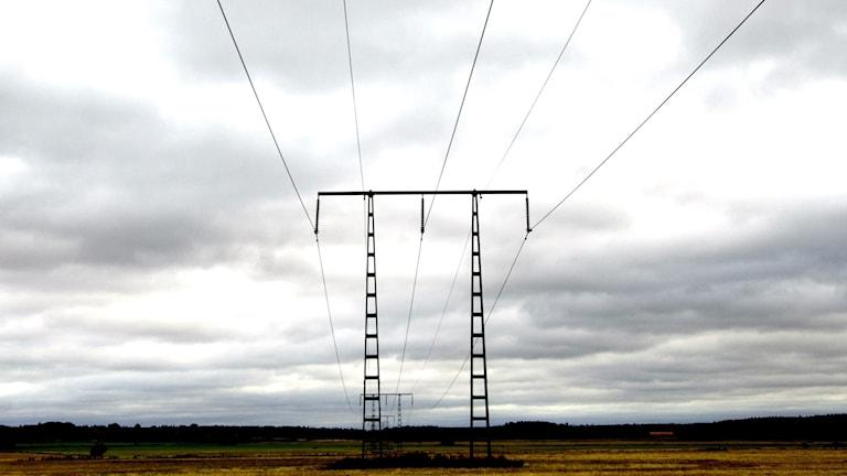 Kraftledning som sträcker sig över ett åkerlandskap. Foto: Hasse Holmberg/TT
