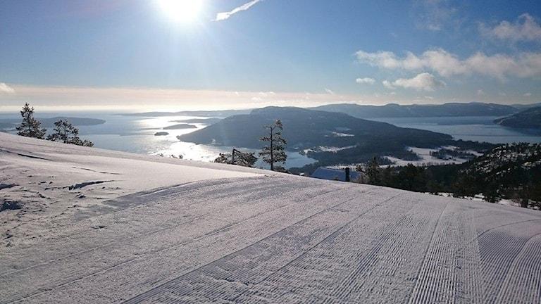 Utsikt från Skulebacken