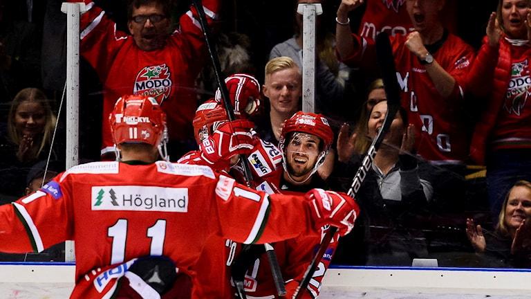 Modos Johan Eriksson jublar efter 3-3 under ishockeymatchen i Hockeyallsvenskan mellan Modo och Leksand. Foto: Erik Mårtensson/Bildbyrån