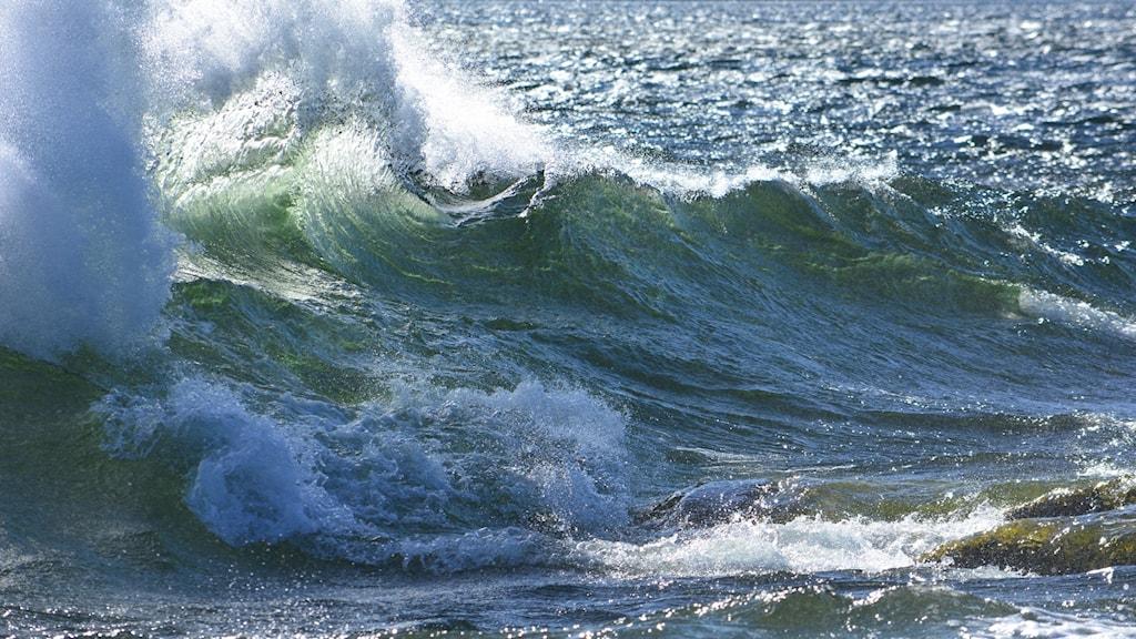 Virvlande stora vågor på Östersjön under en höststorm i slutet av september. Foto: Andreas Josefsson/PRIVAT