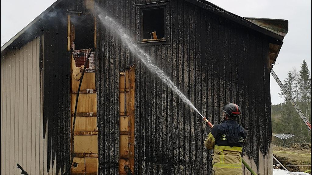 Brandman sprutar vatten på brandskadat hus.