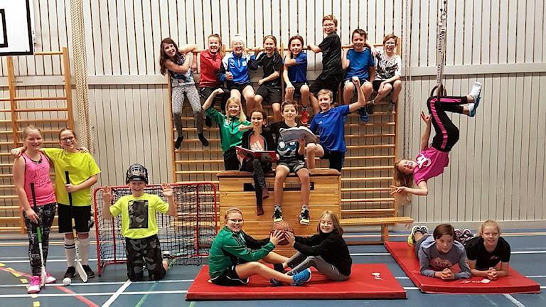 Eleverna i 5B på Bjästaskolan hänger i ribbstolar, ringar, står i innebandymål och sitter på madrasser i gympasalen. Foto: Elin Sundström