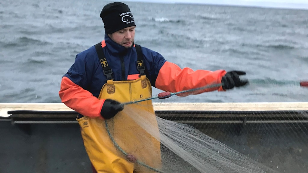 Fiskaren Dennis Bergman drar skötar eller nät. Han har gula galonbyxor på sig.