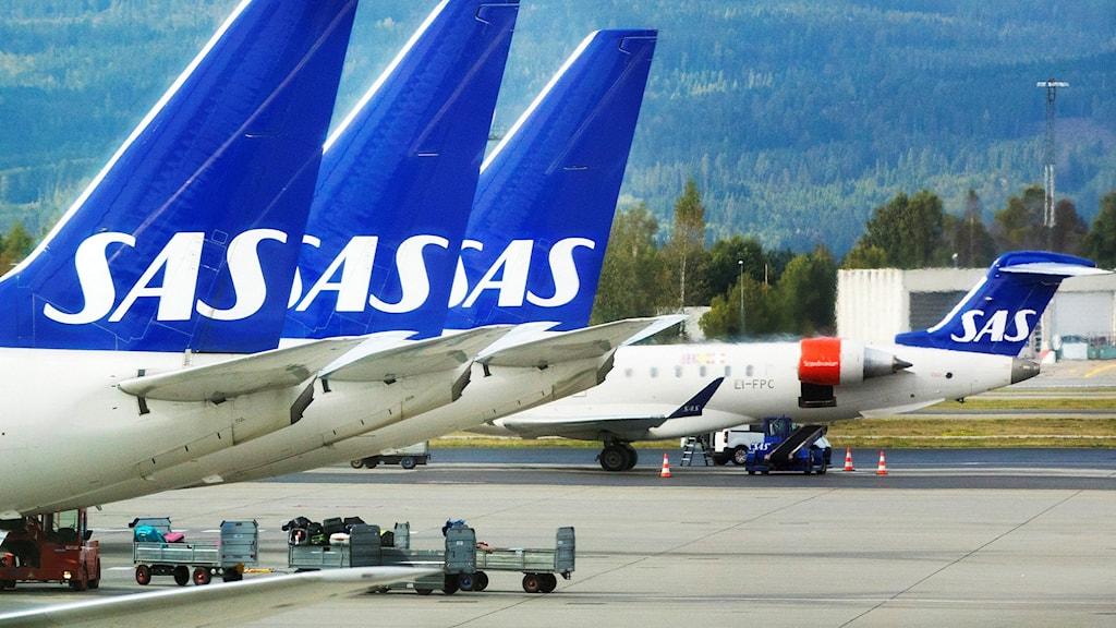 SAS fly som står ved gaten på Gardermoen
