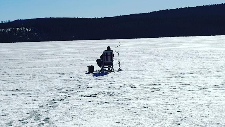 Janne Sjöström sitter på en stol ute på Musksjön och pimplar i vårsolen med borren fastsatt i isen. Foto: Elisabeth Söderström/PRIVAT