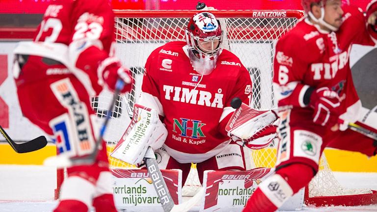 Timrås målvakt Victor Brattström räddar under ishockeymatchen i Hockeyallsvenskan mellan Timrå och Almtuna  den 26 September 2017 i Timrå. Foto: Pär Olert/Bildbyrån