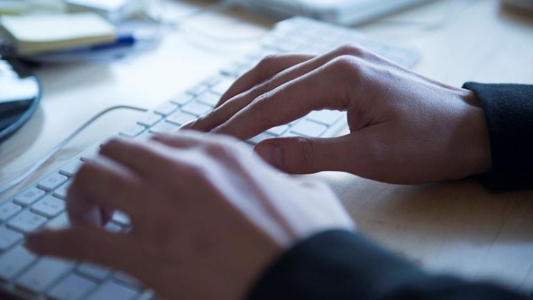 En man skriver på ett tangentbord på ett kontor. Foto: Fredrik Sandberg/TT