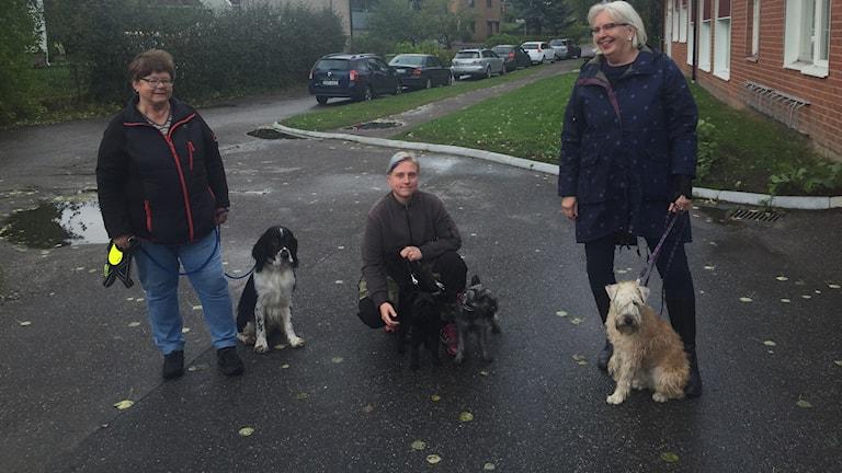 Eva Eriksson, Barbro Edstrand och Isabel Skogström med sina hundar