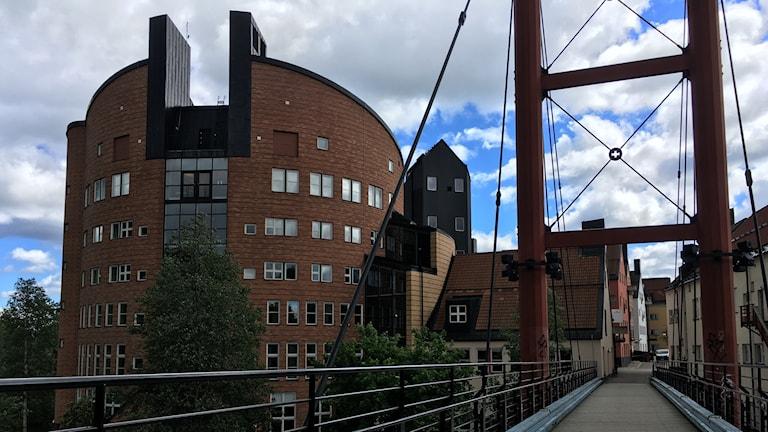 Fasaden på Mittuniversitetet. Foto: Alexander Arvidsson/Sveriges Radio