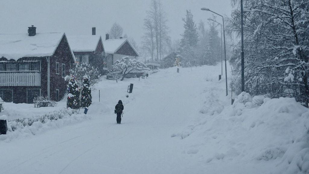 En påpälsad person går upp för en backe i ett tätt snöfall. Foto: Petra Berggren/Sveriges Radio