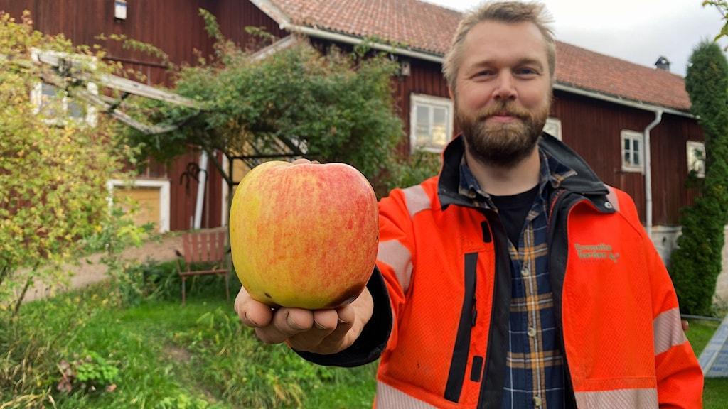 Ett jättestort rött äpple som en skäggig man i orange arbetsjacka håller i. I bakgrunden skymtas en lång röd byggnad och träd.