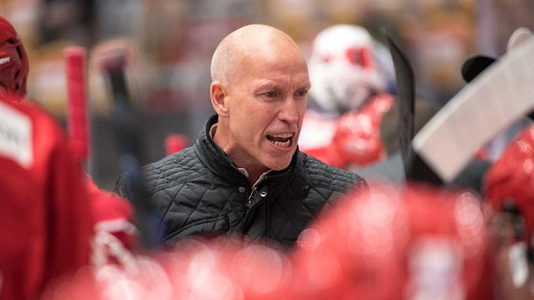 Timrås tränare Fredrik Andersson i båset under en match i hockeyallsvenskan. Foto: Pär Olert/Bildbyrån