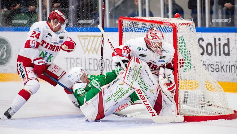 Rögles Christopher Bengtsson tryckt in i målet av Timrås Andreas Molinder under ishockeymatchen i SHL mellan Rögle och Timrå