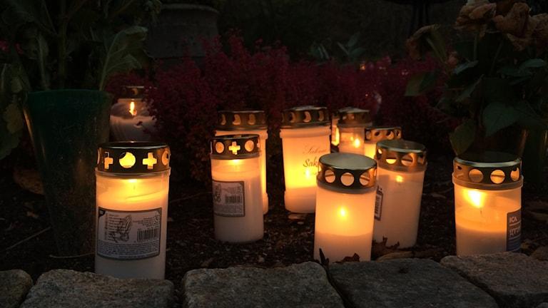 Flera gravljus tända i mörkret på en kyrkogård. Foto: Agneta Jacobsson/Sveriges Radio