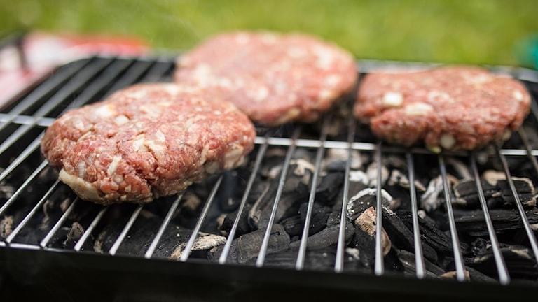 Hamburgere på en grill i en park. Foto: Audun Braastad / NTB scanpix / TT / kod  20520
