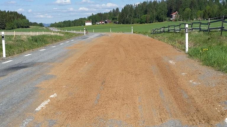 En blandning av spannmål, jäst och vatten ligger utspilld över vägen och gjort den väldigt hal. Foto: Räddningstjänsten
