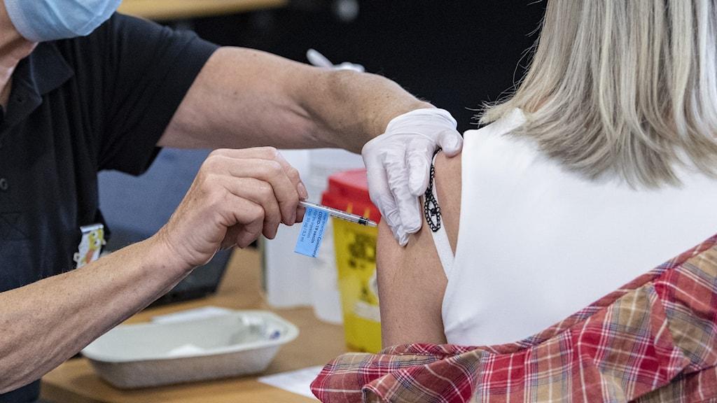 Person med munskydd sätter in en vaccinspruta i armen på en tjej med blont hår som dragit ner skjortan från axeln. Foto: Johan Nilsson/TT