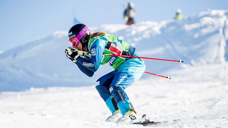 Sandra Näslund i aktion under en skicrosstävling. Arkivbild. Foto: Christine Olsson/TT