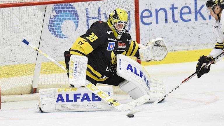VIK Hockeys målvakt Henrik Lundberg