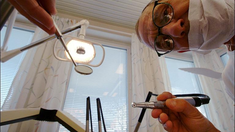 Tandläkare. Foto Johan Nilsson / Scanpix.