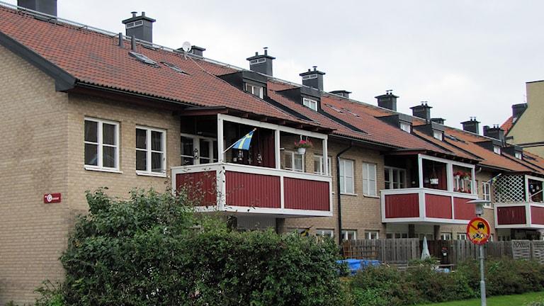 Hyresrätter i centrala Västerås som blivit attraktiva bostadsrätter. Foto: Patrik Åström/SR.