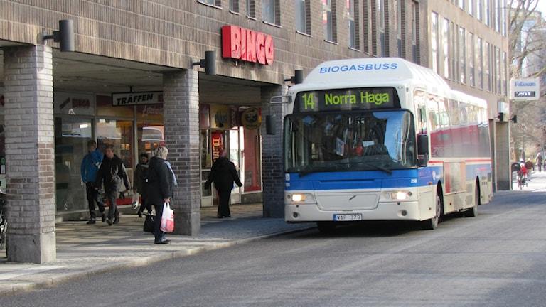 Buss 14 vid hållplats på Stora gatan i Västerås / Foto: Natalie Caballero SR