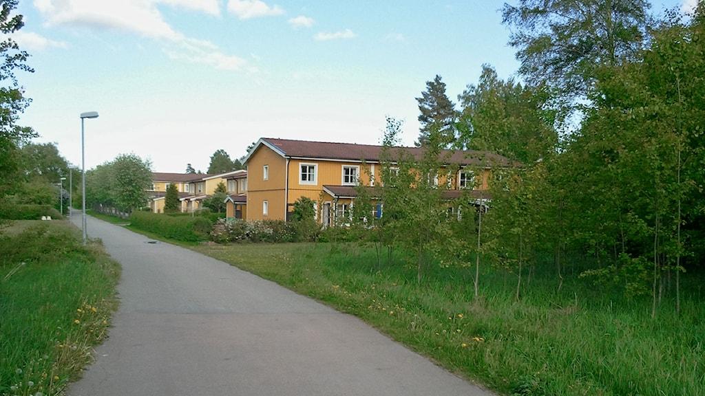 En gång- och cykelväg på Gryta i Västerås (Arkivbild) / Foto: Michael Gawell SR