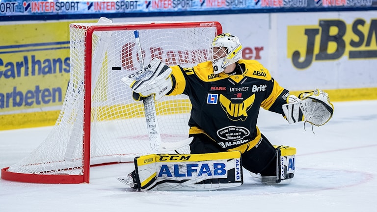 VIK Hockeys målvakt Samuel Ersson