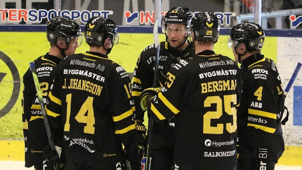VIK Hockey samlade spelare