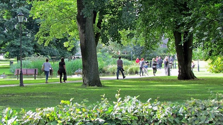 Stadsparken i Västerås.