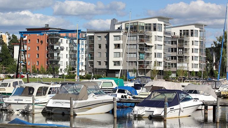 Båtplatser vid Öster Mälarstrand i Västerås / Foto: Michael Gawell SR