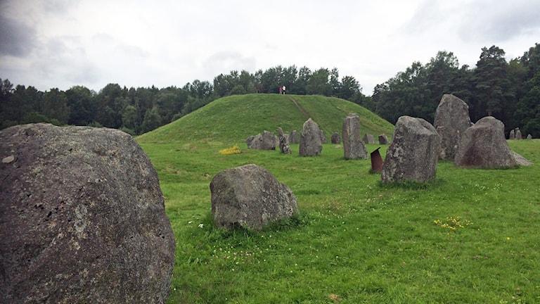 Nordisk styrka hade möte vid Anundshög i Västerås.