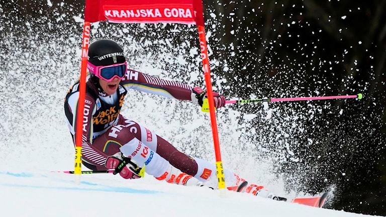 Frida Hansdotter åker världscupen i storslalom i Kranjska Gora 6 januari 2018.