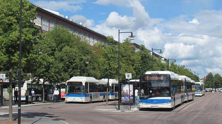 Bussar vid Centralstationen i Västerås. Foto: Eva Kleppe/Sveriges Radio.