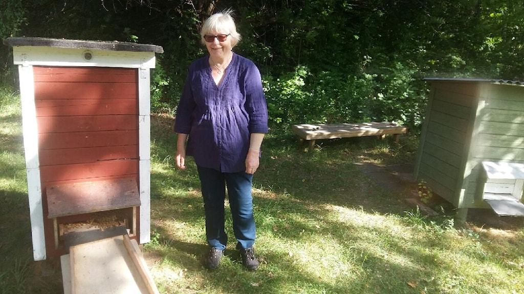 Lena Nilsson framför några av sina bikupor.