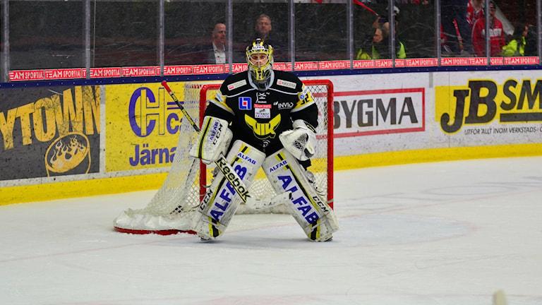 Jonas Fransson, målvakt i VIK Hockey. Foto: Mattias Forsberg/Sveriges Radio