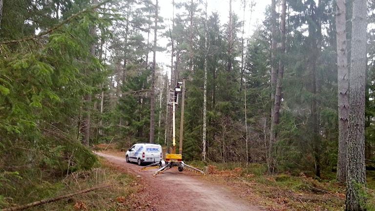 Arbete med att kolla elljusspårets lampor sker från bil med lyft. Foto: Kristin Axinge Jaslin/Sveriges Radio.