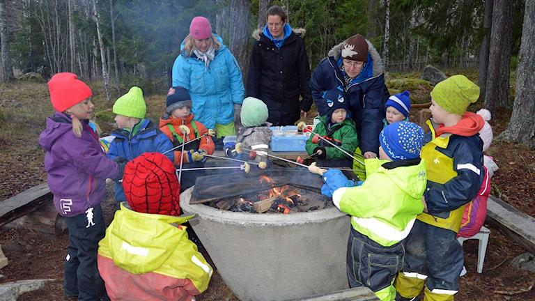 Barn grillar äpplen över eld. I bakgrunden Nettan Eliasson förskollärare, Maria Borgström förälder och Vicky Bergström förskolechef.