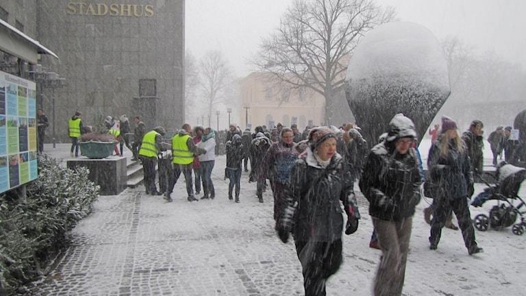 Manifestation mångfald. Foto: Inga Korsbäck/Sveriges Radio.