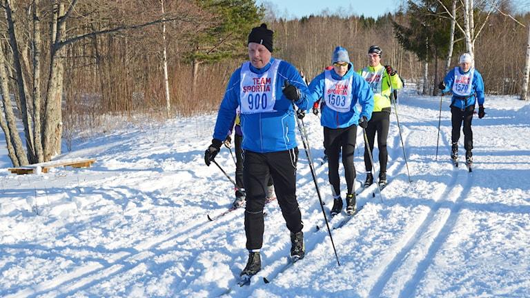 Skidåkare i Engelbrektsloppet 2015. Foto: Eva Kleppe/Sveriges Radio.
