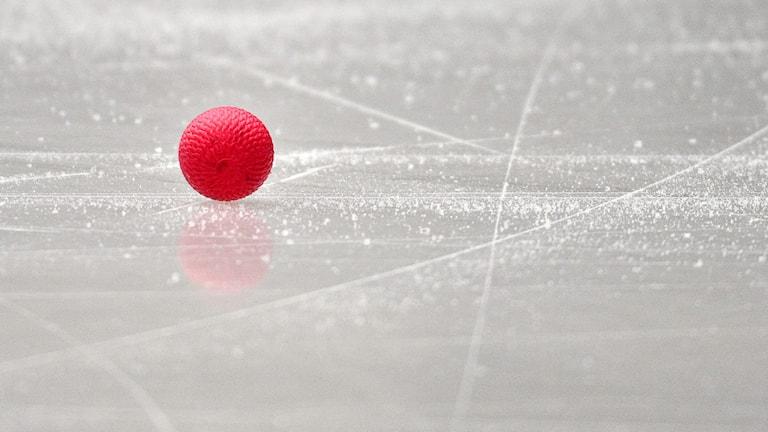 Bandyboll på isen / Foto: Anders Wiklund. TT