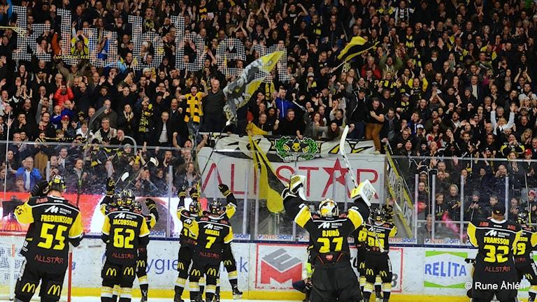 VIK Hockey möter Björklöven i premiären. Foto: Rune Åhlén.