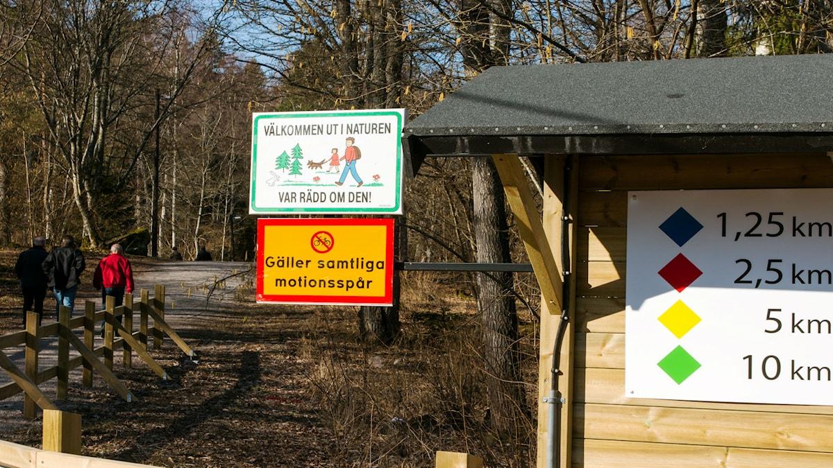 Motionsspåret vid Björnön. Foto: Andreas Eriksson/Sveriges Radio.