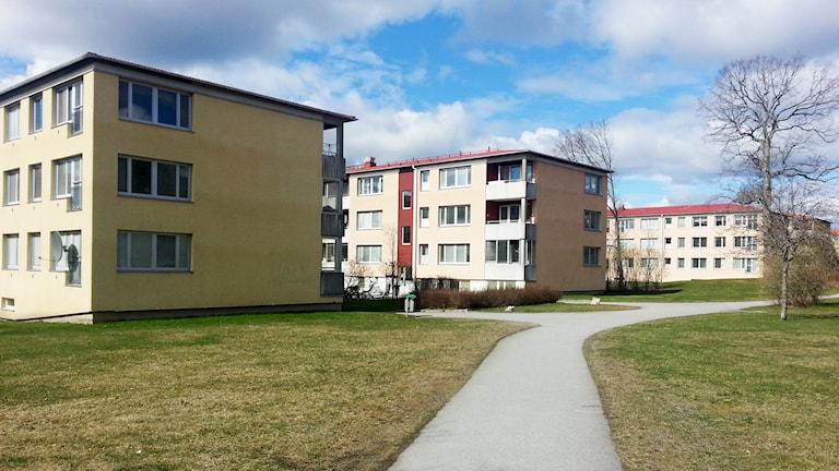 Hyreshus på Råby i Västerås. / Foto: Michael Gawell. Sveriges Radio.
